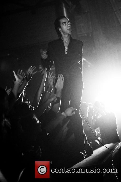 Nick Cave 8