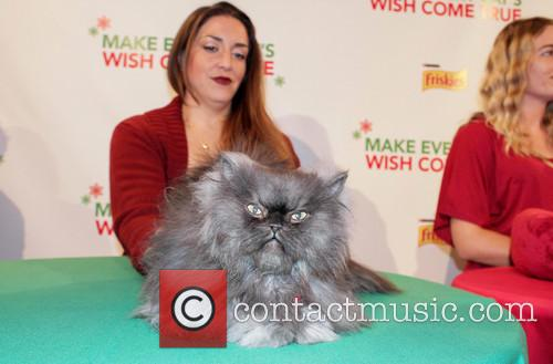 Friskies Christmas music video launch