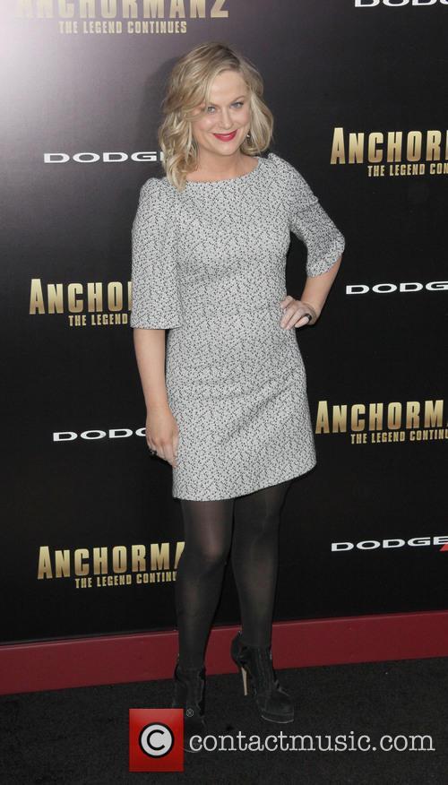 Amy Poehler 7