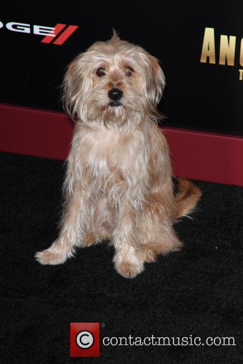 Baxter 1