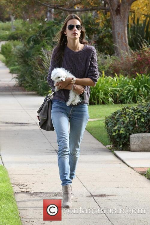 alessandra ambrosio alessandra ambrosio out with her 4003954