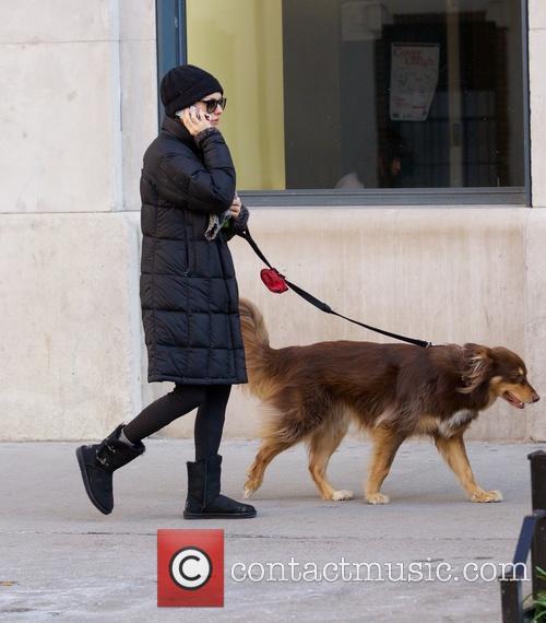 amanda seyfried finn dog