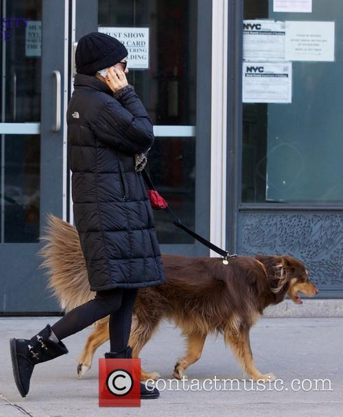 Amanda Seyfried seen in NYC