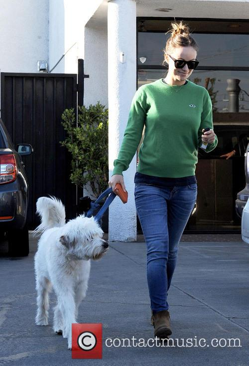 Pregnant Olivia Wilde takes her dog to Cage...