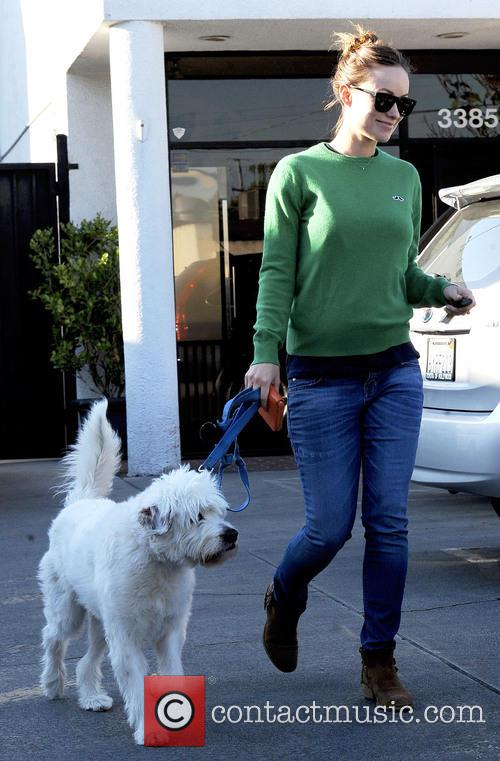 Pregnant Olivia Wilde takes her dog to Cage Free K-9 Camp,