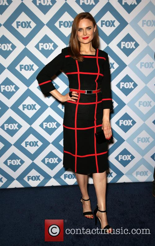 emily deschanel 2014 tca winter press tour 4024118
