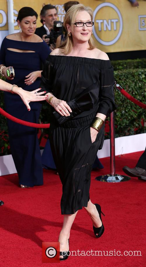 meryl streep the 20th annual screen actors 4032870
