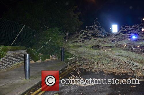 A fallen tree blocks a road in north...