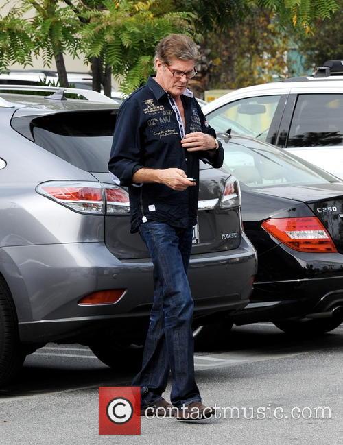David Hasselhoff 27