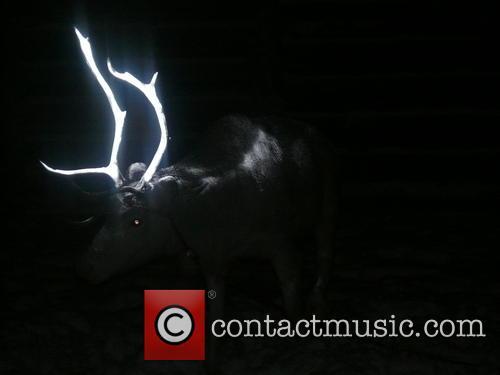 Glowing Reindeer Antlers