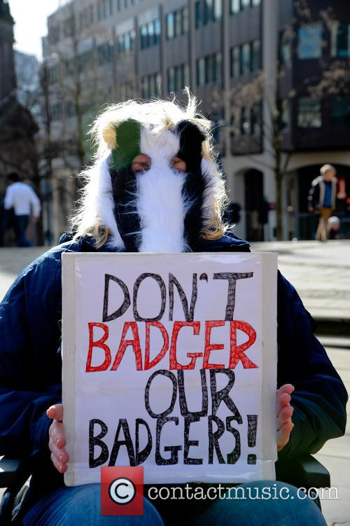 Birmingham and Badger Cull Protest 5