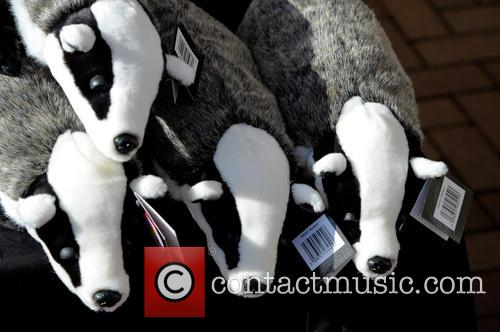 Birmingham and Badger Cull Protest 8
