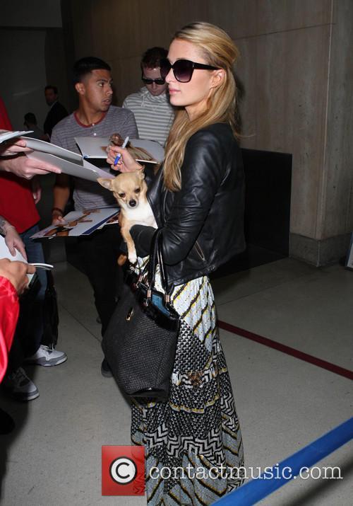 Paris Hilton 1