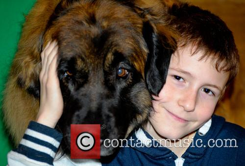 Crufts and Day 11