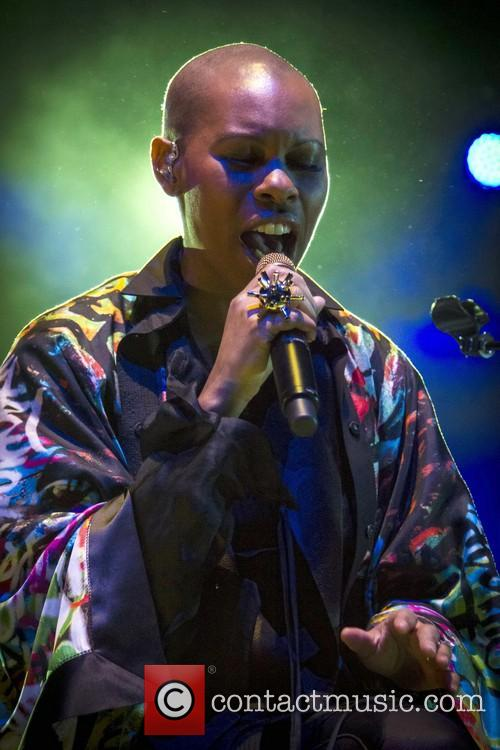 Deborah Anne Dyer, Skin and Skunk Anansie