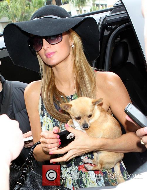 Paris Hilton arrives LAX