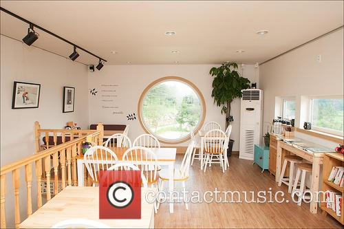 Cafe Dreaming Camera