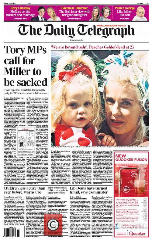 Peaches Geldof and The Daily Telegraph 4