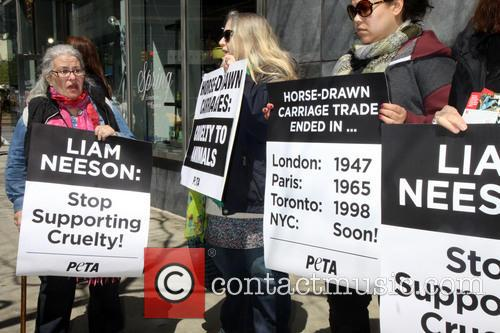 Protesters, Atmosphere and Peta 5