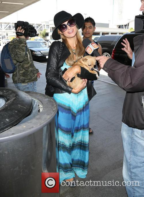 paris hilton paris hilton arrives at lax 4185786