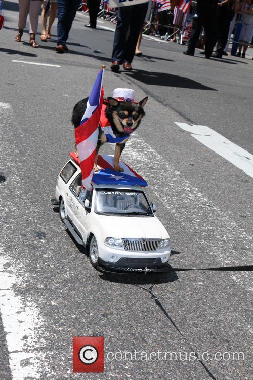 Puerto Rican Day Parade 4