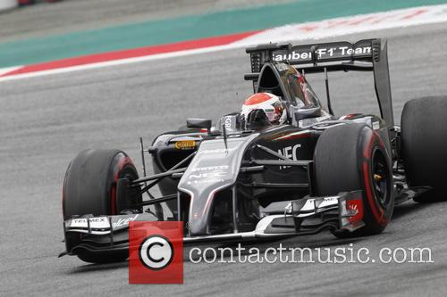 Formula One and Adrian Sutil 3