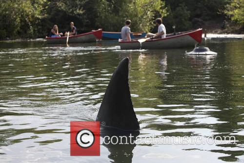 'Fins-bury Shark' spotted in boating lake prank