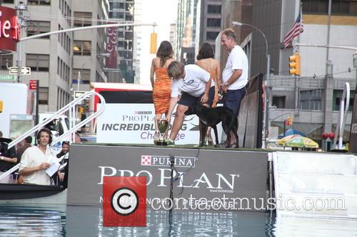 David Letterman and Dock Diving Dogs 6