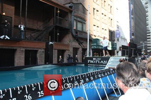 David Letterman and Dock Diving Dogs 8