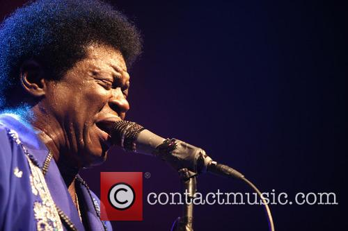 Charles Bradley performs live