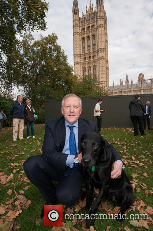 Westminster Dog of the Year