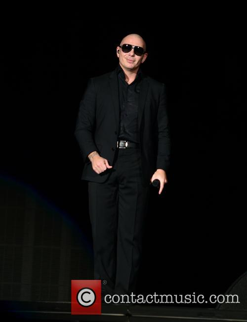 Pitbull 1