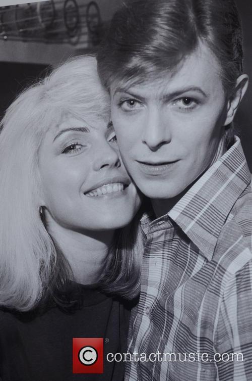 Chris Stein, Gallery Photo and Blondie 8