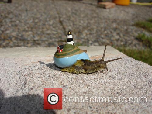 Island Snail 3
