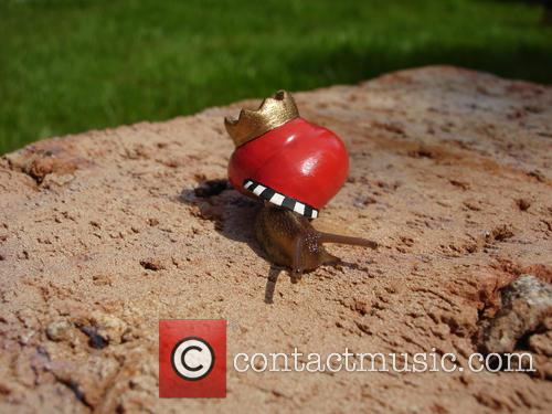King Of Snails 2