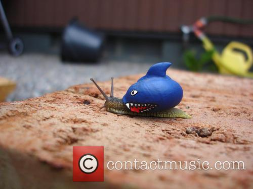 Shark Snail 3