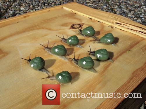 Snail Army 1