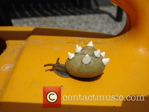 Spiked Snail 1