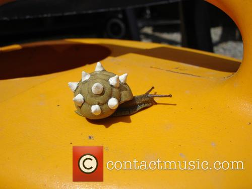 Spiked Snail 2