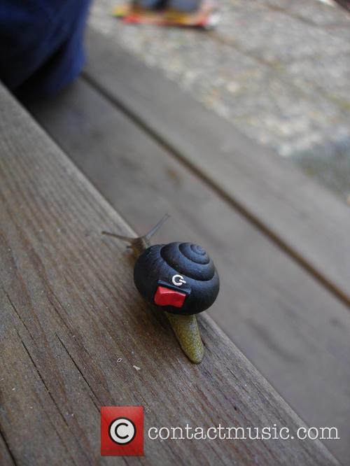 Switch Snail 1