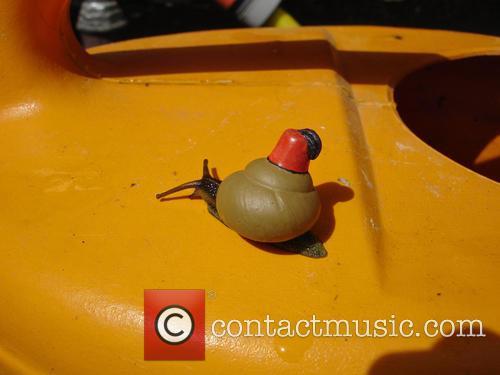 Turkish Snail 1