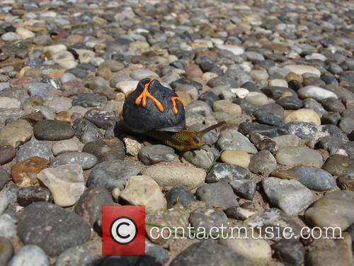 Volcano Snail 1
