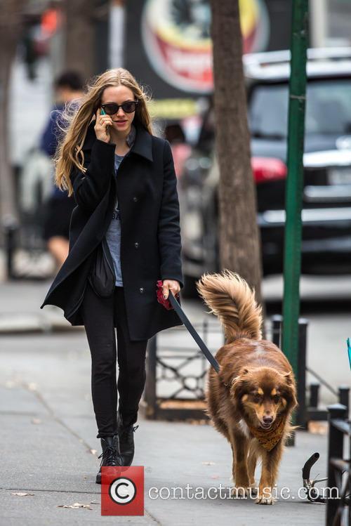 Amanda Seyfried and Flynn 9