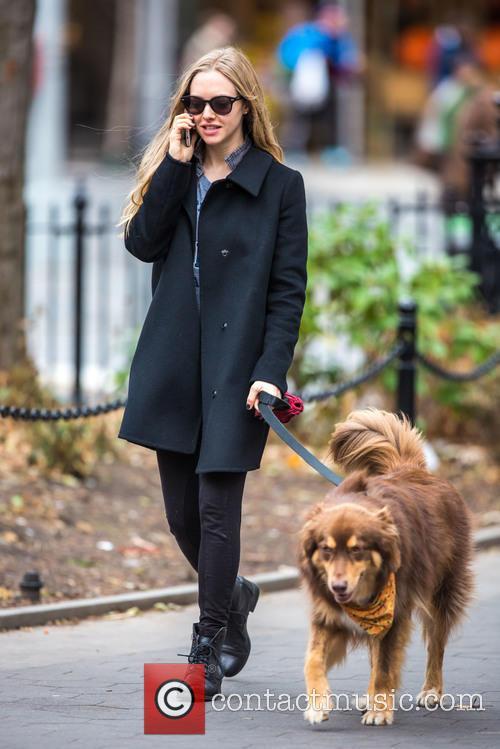 Amanda Seyfried and Flynn 11
