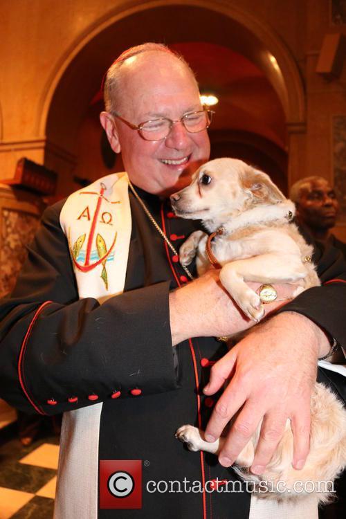 Cardinal Dolan 4