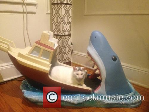 Uncle Makes Jaws-Inspired Crib For 2 Month Old...