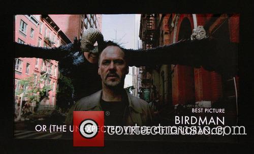 Birdman 8