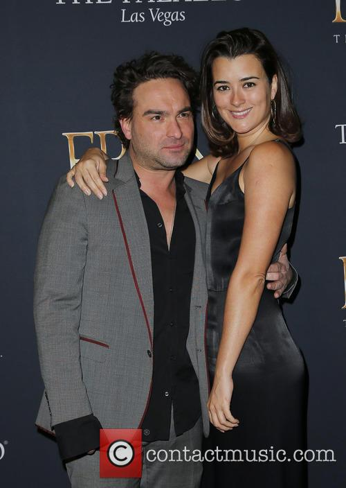 Johnny Galecki and Cote De Pablo