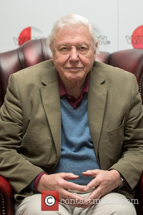 David Attenborough 2