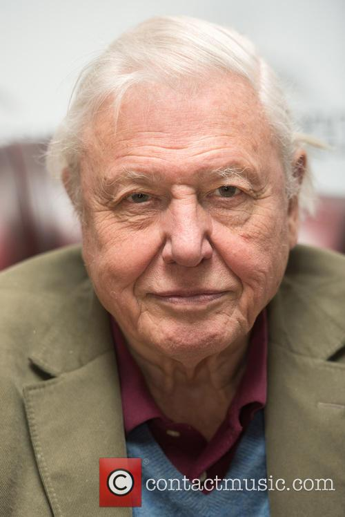 David Attenborough 3